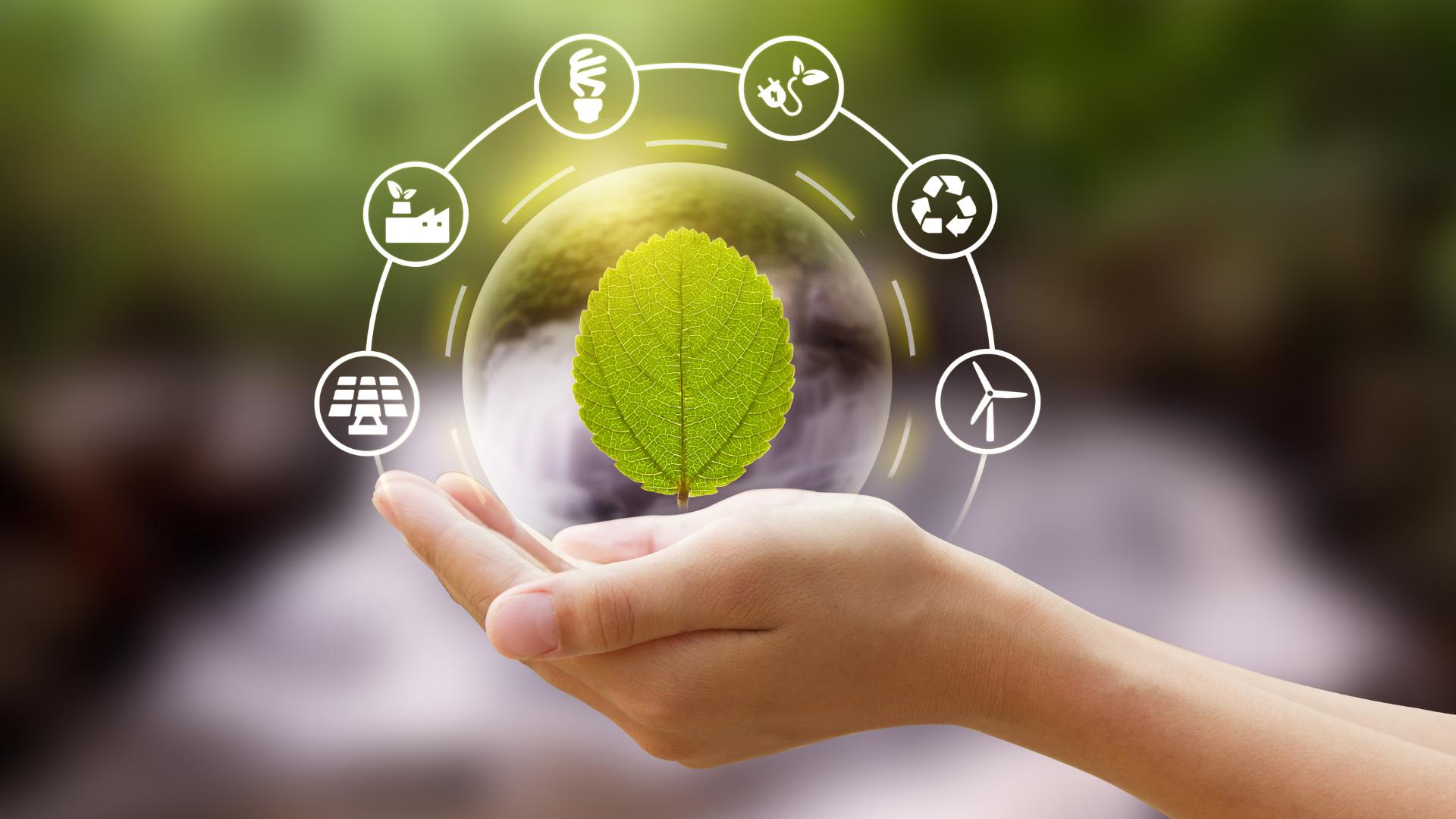 sostenibilità ambientale