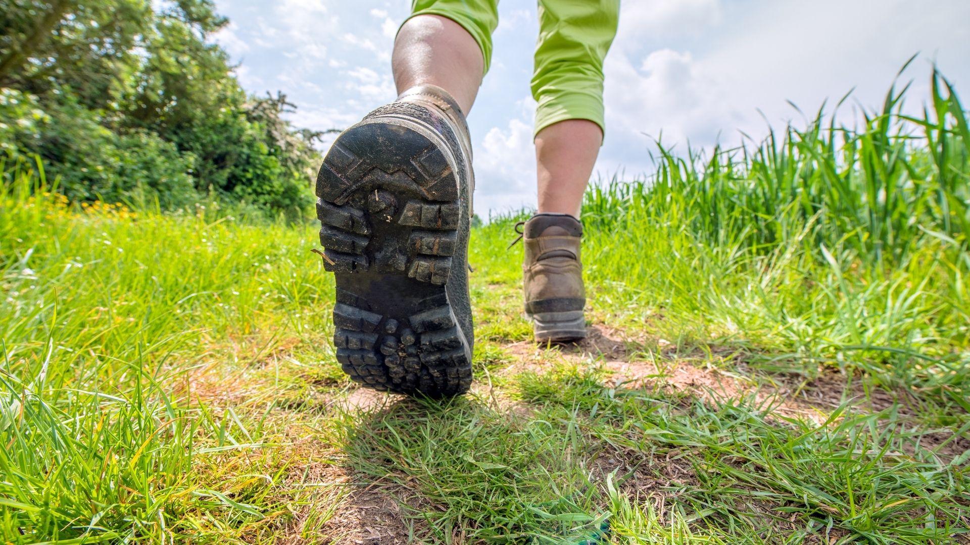 Cammini toscani